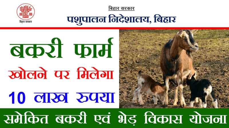 goat-farming-scheme-get-upto-10-lakh